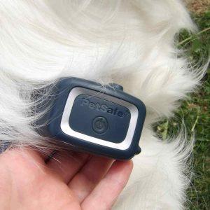 collier anti aboiement PetSafe