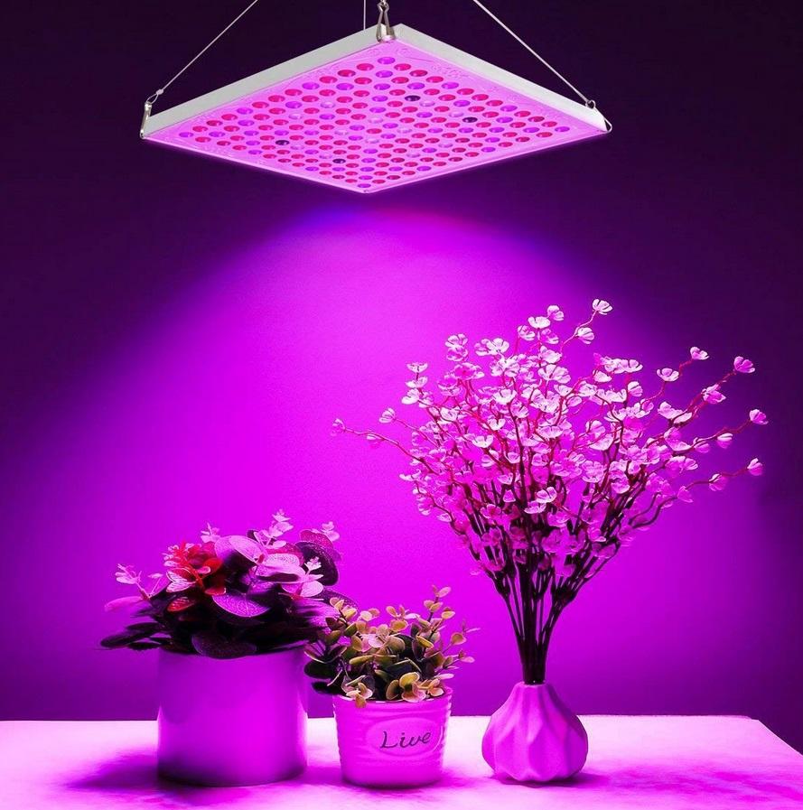 lampe horticole utilisation